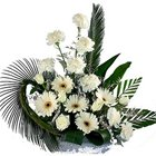 Special Carnations N Gerberas Bunch