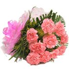 Gorgeous Assemble of Pink Carnations