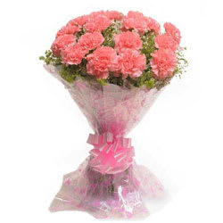 Majestic Bouquet of Carnations in Pink Colour