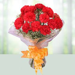 Dreamy Red Coloured Carnations Arrangement