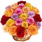 Brilliant Esteemed Ensemble of Mixed Roses