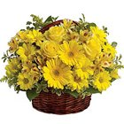 Exotic Passion for Fashion Yellow Flowers Basket