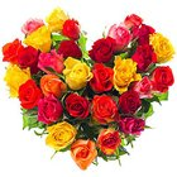 Joyful Hearty Arrangement of Thirty Mixed Roses
