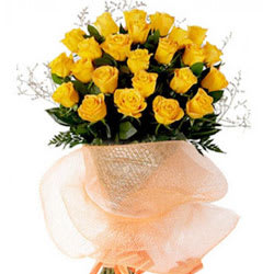 Classic Special Beauty of Yellow Roses Collection