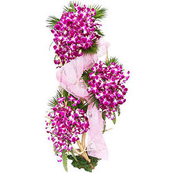 Breathtaking Three-Tier Arrangement of Orchids