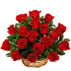Enchanted Love of 18 Red Roses in a Basket