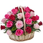 Dazzling Falling in Love Fifteen Pink N Red Roses Basket