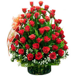 Stunning Selection of Premium Red Coloured Roses in a Basket
