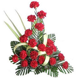 Chic Sweetheart Floral Selection of Red Carnations