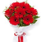 Inflated Shimmer Red Gerberas Bouquet