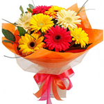 Superb Looking Bouquet of Assorted Gerberas