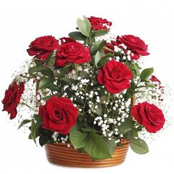 Stylish Arrangement of Red Roses