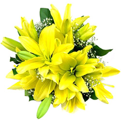 Anniversary Delight Bouquet of Yellow Lilies
