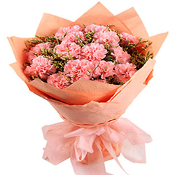 Deliver this petite Hand Bunch of Pink Carnations in Tissue Packing