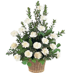 Deliver this attractive White Carnations basket