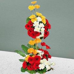 Stunning Long Standing Bouquet of Fifty Mixed Gerberas