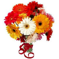 Eye-Catching display of Colorful One Dozen Gerberas in a Glass Vase