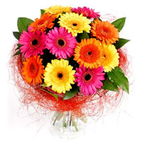 Designer Bouquet of Assorted Gerberas