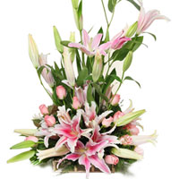 Charming Pink Roses N Pink Lilies Hand Bunch