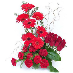 Radiant assemble of Red Carnations, Roses & Gerberas