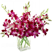 Eye-Catching Arrangement of Orchids in a Glass Vase