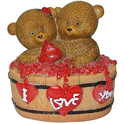 Nurturing Twin Teddy with a Heart