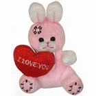 Gladsome 'Mr. Love' Ruddy Bunny