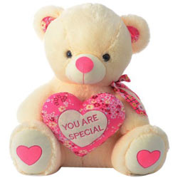 Charming Teddy Bear with a Heart