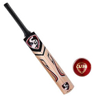 SG Cobra Gold Kashmir Willow Cricket Bat (6, 950 - 1250 g) and SG Club Cricket Ball for Cricket Freaks